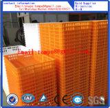 Jaulas de los pollos vivos del rectángulo plástico del volumen de ventas para transportar la fábrica directa