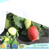 1%~3%UV pp. nichtgewebtes Gewebe für den Agricalture Deckel hergestellt in China