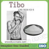 女性のホルモンの薬CAS 5630-53-5のための反老化のエストロゲンのステロイドの粉Tibo
