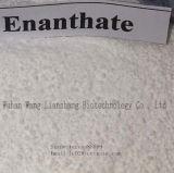 Het veilige Testosteron Enanthate cas#315-37-7 van de Hormonen van Bodybuilding van het Schip Steroid