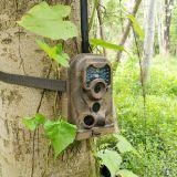 Cámara de aves al aire libre Oberservation Vigilancia de Vida Silvestre para la caza deportiva