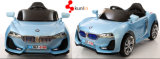 Kind-Spielzeug-Auto-nachladbare 12V Batterie RC