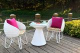 Tabela e cadeira ao ar livre para a mobília do jardim ajustada (HCQ5)