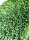 훈장을 정원사 노릇을 하는 정원을%s 인공적인 잔디 같이 자연