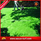 منظر طبيعيّ تنافسيّ اصطناعيّة عشب سعر لأنّ بينيّة وحديقة زخرفة