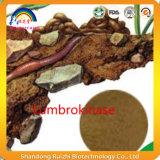 Порошок Lumbrokinase выдержки Earthworm 100% чисто высушенный