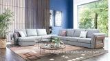 Sofa sectionnel moderne E1703 réglé de tissu de sofa de tissu de vente de Hote grand