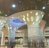 不規則なパーホレーションパターンが付いている多彩な偽アルミニウム天井