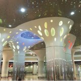 Colorido techo de aluminio falso con el patrón irregular Perforación