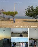 Интегрированный солнечный уличный свет все в одном проекте