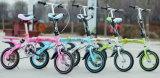 신식  20 Inch  접히는 Bike 접히는 자전거