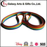 熱転送の虹耐久ファブリック平野のナイロン調節可能なドッグカラーおよび鎖