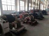 Piñón para la máquina del molino del cemento
