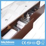 Cabina de cuarto de baño montada en la pared de la alta calidad con la vanidad lateral y 2 lavabos (BF372D)