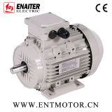 Motor IE2 elétrico assíncrono aprovado do CE