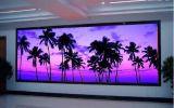 Fijos de interior de RoHS del Ce del CCC instalan la publicidad de la pantalla del panel del LED/video de visualización