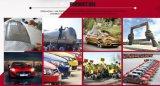 Prämien-Auto-Lack des Auto-Lack-Markt-2016