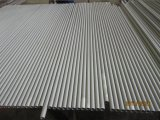 347H/1.4912/de de Naadloze Pijp/Buis van het Roestvrij staal TP347H/S34709