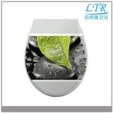Siège des toilettes décoratif blanc proche mou de Duroplast