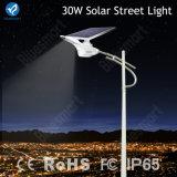2016 luz de rua solar da luz solar inovativa nova da cisne do Patten 30W