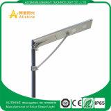 indicatore luminoso di via solare della lampada del doppio di fabbricazione 40W