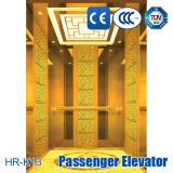 Direkte Hersteller-Passagier-Höhenruder-Qualität
