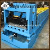 Circuito idraulico con il rullo di controllo del PLC che forma macchina (AF-800)