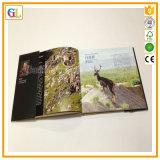 Impresión a todo color del libro de Hardcover de la alta calidad