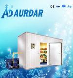 Комната хранения блока кубика охладителя и льда замораживателя и льда холодная