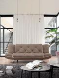 Modernes Gewebe gefaltetes Sofa-Bett mit mit hoher Schreibdichtekissen