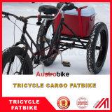 バイクのRecumbent Fatbike Recumbent Trikeの脂肪質のバイクのRecumbent脂肪質のタイヤのバイク