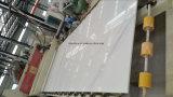 Italiaanse Marmeren Witte Marmeren Plak Statuarietto