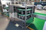 Alta calidad 300b/H embotellado del agua de 5 galones y máquina que capsula