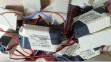 2*3W cm Plastikinnenstromversorgung des Fahrer-420mA