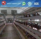 Cages de batterie automatiques de ferme avicole A3l90 pour les pondeuses