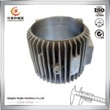 Il fornitore della carcassa di motore di alluminio la carcassa di motore della pressofusione con il rivestimento della pittura