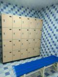 Immagazzinamento in impermeabile di plastica l'armadio dell'ABS per la piscina