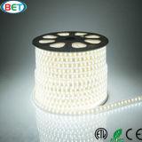 Lumière de Noël flexible du pari SMD5050 DEL avec le certificat d'ETL