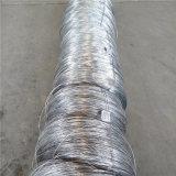 Fil recuit lumineux de fil d'acier inoxydable avec le diamètre de 0.5mm