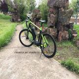 bicicleta elétrica de condução MEADOS DE Rseb-511 da montanha de 36V 250W