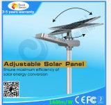 4W-50W extérieur tout dans un réverbère solaire de DEL avec le panneau de Soalr