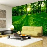 Papel de parede de madeira não tecido barato feito sob encomenda da paisagem da floresta da alta qualidade da fábrica de Shanghai
