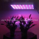 Il LED si sviluppa chiaro (JUXN-30 120W)