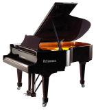 Piano à queue de clavier noir d'instruments de musique (GP-212) Schumann