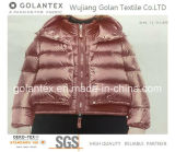 Tela de nylon de Downproof del tafetán para abajo la chaqueta/la capa/el abrigo esquimal/los chalecos