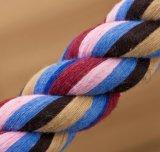 محبوب زركش قطب حبل [بوبّي دوغ] مضغ لعبة عقدة ميل بحري حبل جرّ حرب سنّ يدرّب تنظيف
