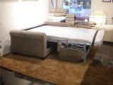 Мебель софы Италии отдыха кожаный (741B)