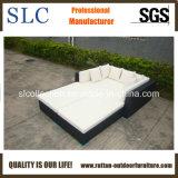 耐久及び快適な藤のラウンジのソファー(SC-B7019-B)