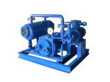 Jzj2b30-2 enraíza a unidade do vácuo da água/Anel