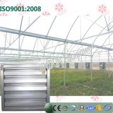 Ventilation in opposizione Fan per Greenhouse